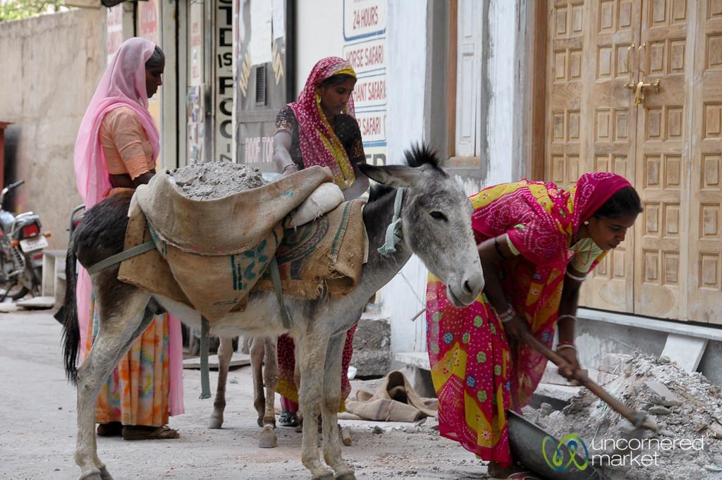 Loading Down the Donkey - Udaipur, India