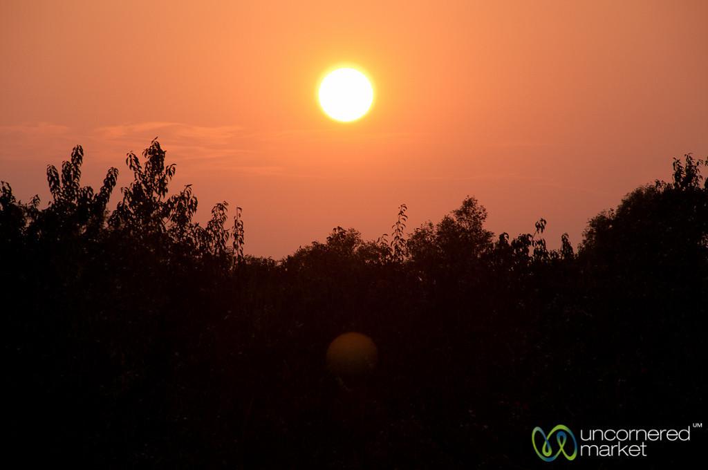 Sunset in the Sundarbans - Bangladesh