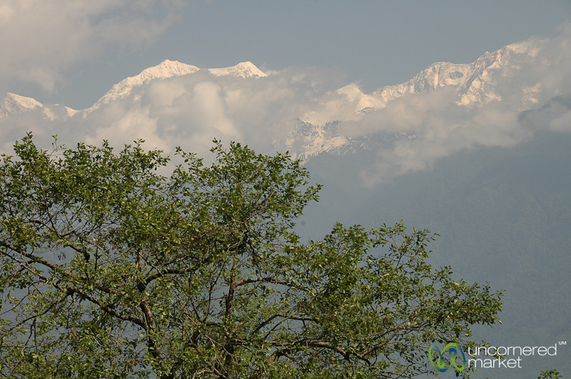 Clouds Finally Clear from Khangchendzonga - Pelling, Sikkim