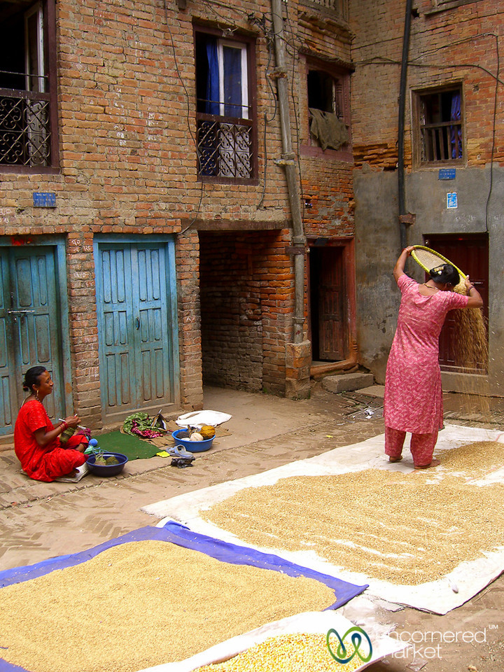 Laying Out Grain to Dry -  Bhaktapur, Nepal
