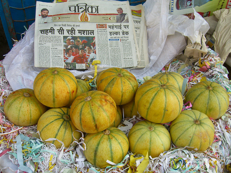 Squash and Newspapers - Kolkata, India
