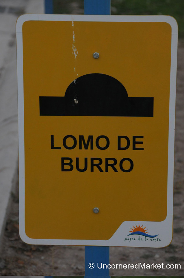 Back of a Donkey = Speed Bump?