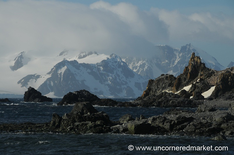 Looking Out from Half Moon Island - Antarctica