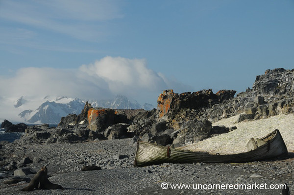 Abandoned Boat and Elephant Seal - Antarctica