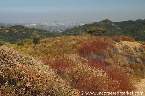 Hiking at Temescal Canyon outside of Los Angeles, California
