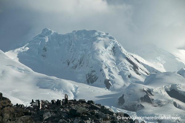 Penguins Against the Mountain - Antarctica