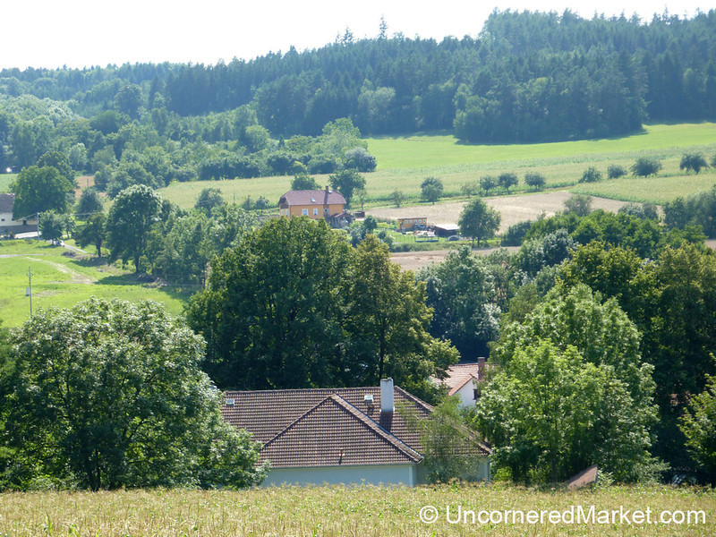 A View of Our Abode in the Czech Countryside