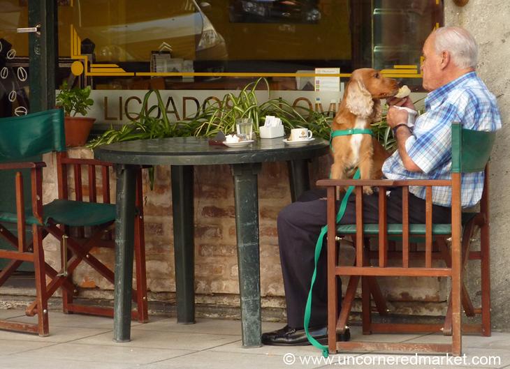 Man's Best Friend - Buenos Aires, Argentina