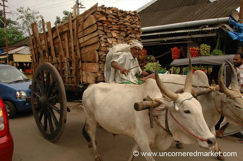Ox Cart Jam - Kollam, India
