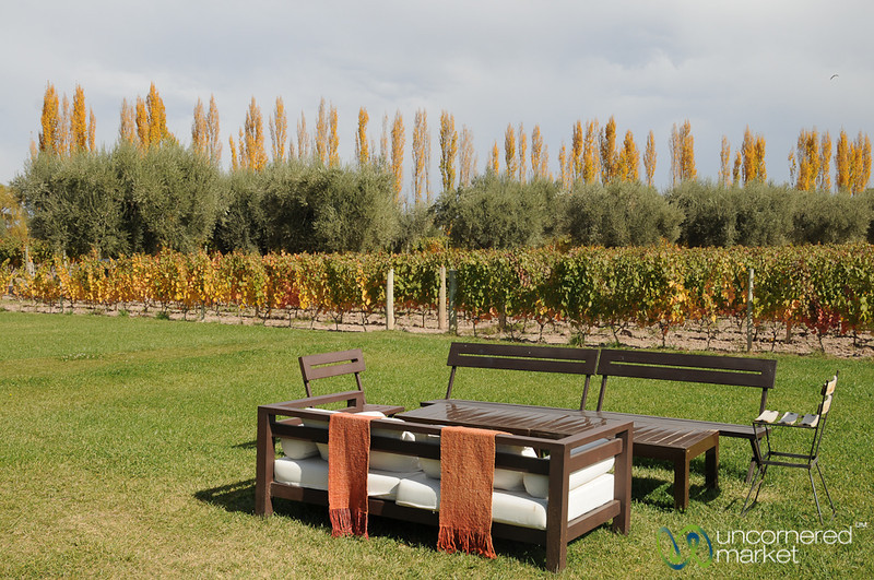 Lovely Outdoor Seating Area - Achaval Ferrer Winery, Argentina