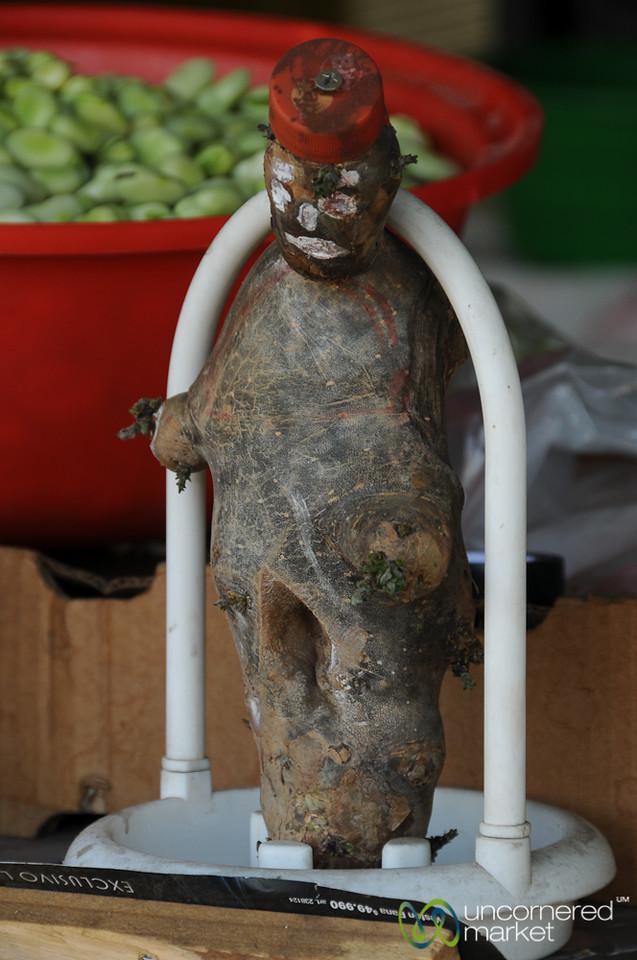 Voodoo Doll Looking Root - Santiago, Chile