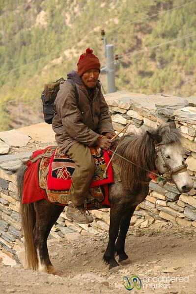 Steady Rider - Annapurna Circuit, Nepal
