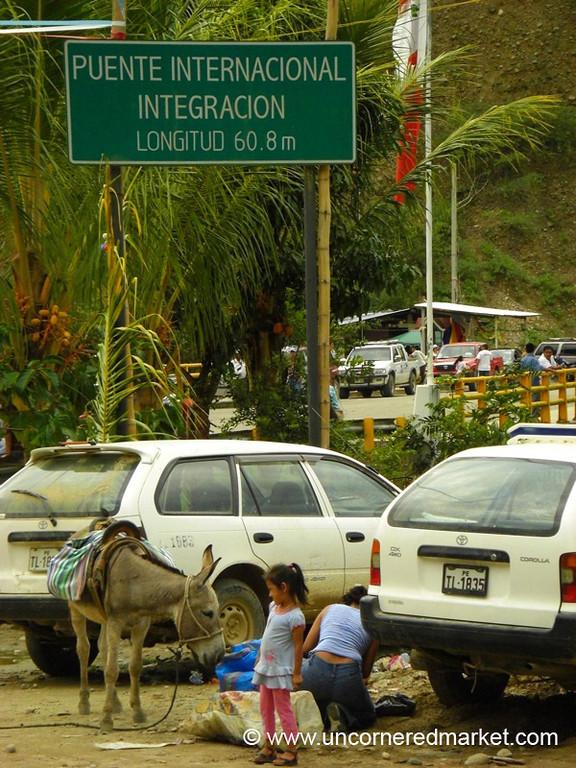 A Nosy Donkey - La Balsa, Peru