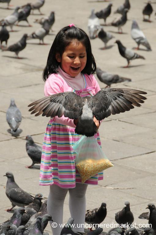 I Like to Feed the Birds - La Paz, Bolivia