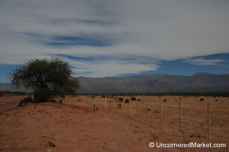 Scenery Outside Cafayate, Northern Argentina