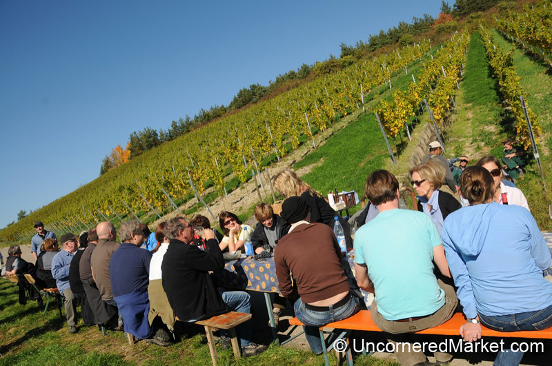 Lunchtime at the Vineyard - Thüngersheim, Germany