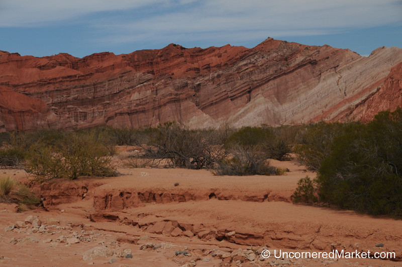 Red Stripes and Desertscapes in Northern Argentina