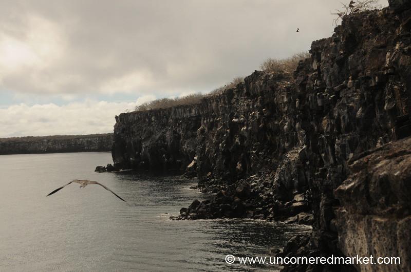 Cliffs of Genovesa Island - Galapagos