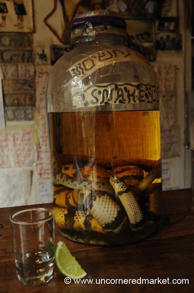 Snake Moonshine - Vilcabamba, Ecuador