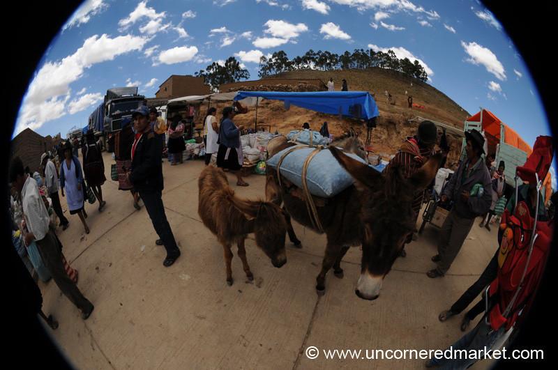 Fisheye View of Tarabuco Market - Bolivia