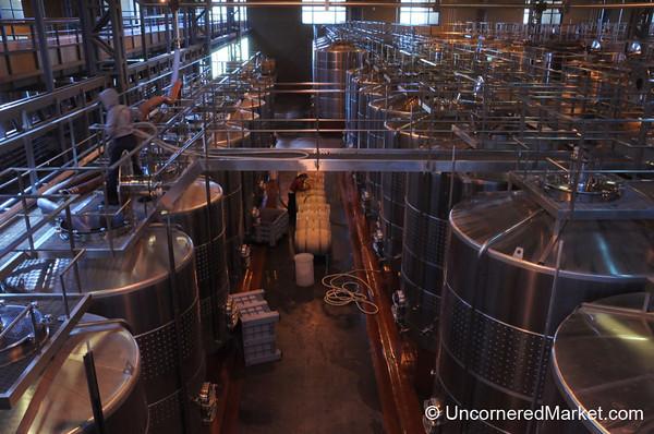 Inside Fin del Mundo Winery - Neuquen, Argentina
