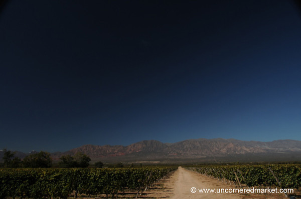 Road Through the Wineries - Cafayate, Argentina