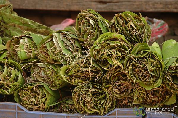 Betel Nut Leaves All Rolled Up - Kathmandu, Nepal