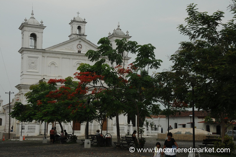 Colonial Church and Trees - Suchitoto, El Salvador