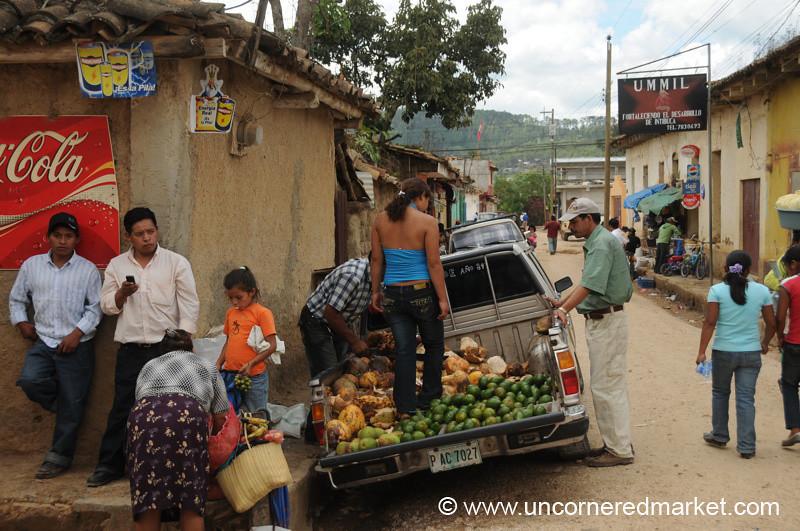 Coconuts and Avocadoes - La Esperanza, Honduras