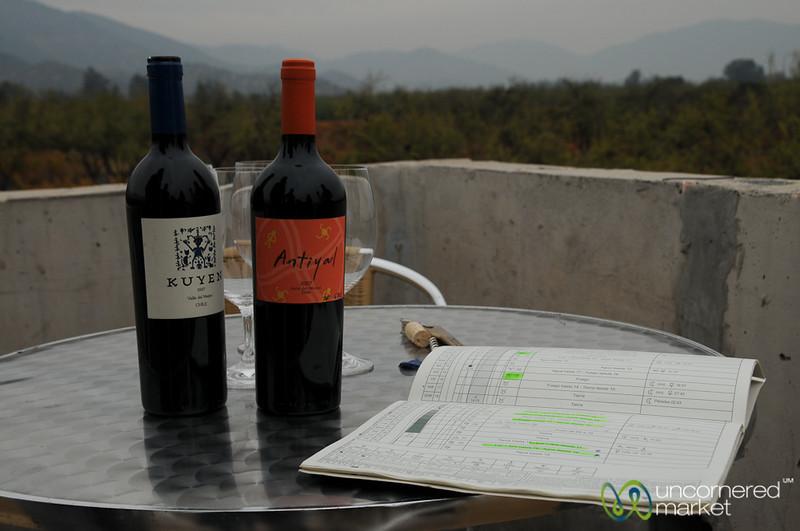 Antiyal and Kuyen Wines - Maipo Alto, Chile