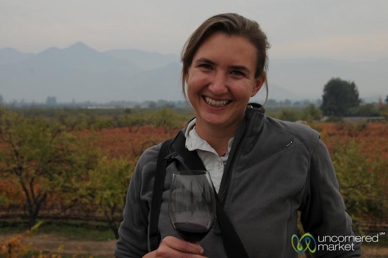 Wine Tasting at Antiyal Winery - Chile