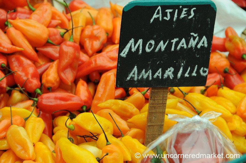 Chilies from the Mountains - Mistura Gastronomy Festival in Lima, Peru