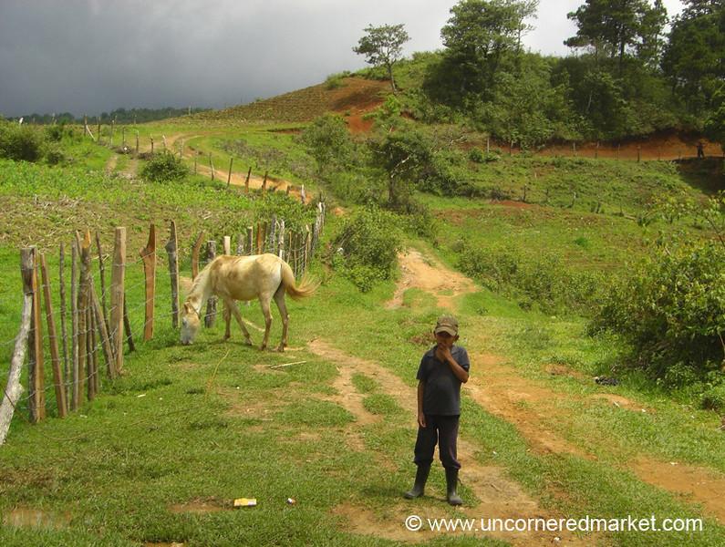 Boy Waiting with Horse, Ruta Lenca Landscape - Marcala, Honduras