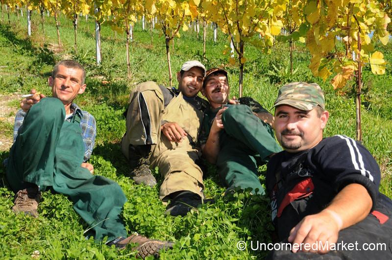 Vineyard Workers Taking a Break - Thüngersheim, Germany