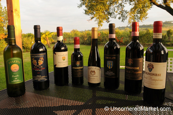 Our Collection of Tuscan Wine - Montepulciano, Italy