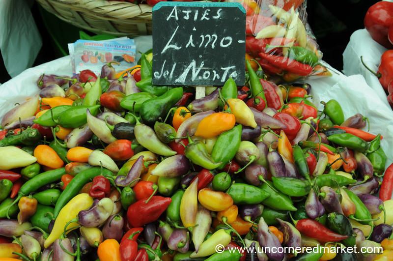 Ajies Limo del Norte - Mistura Gastronomy Festival in Lima, Peru