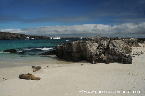 View of Darwin Bay - Galapagos Islands