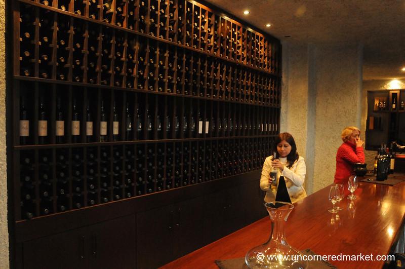 Wine Tasting at Bodega El Transito - Cafayate, Argentina