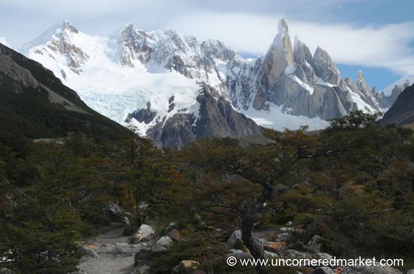Changing Leaves at El Chalten, Argentina