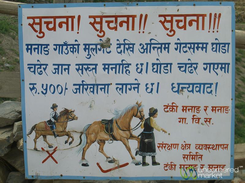 Walk, Don't Ride Your Horse - Annapurna Circuit, Nepal