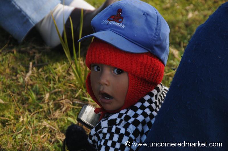Little Spiderman - Outside Cuenca, Ecuador