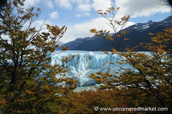 Peaking Through to the Glacier - El Calafate, Argentina
