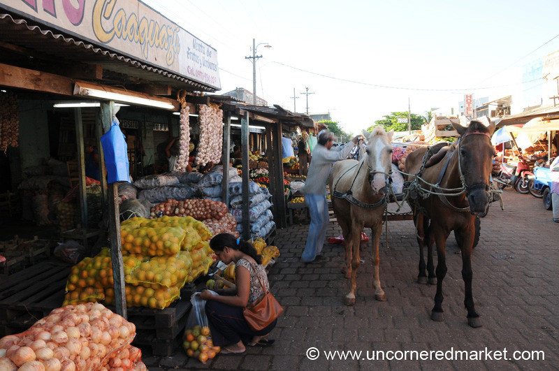 Loading Food at the Market - Concepcion, Paraguay
