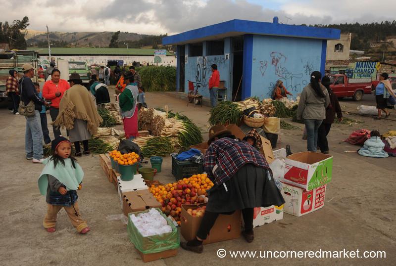 Setting Up Fruit and Vegetables - Saquisili, Ecuador