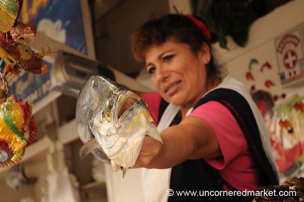 Meet the Fish - Surquillo Market, Lima (Peru)
