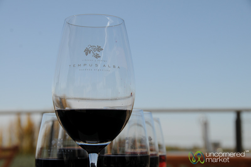 Wine Tasting at Tempus Alba Winery - Mendoza, Argentina