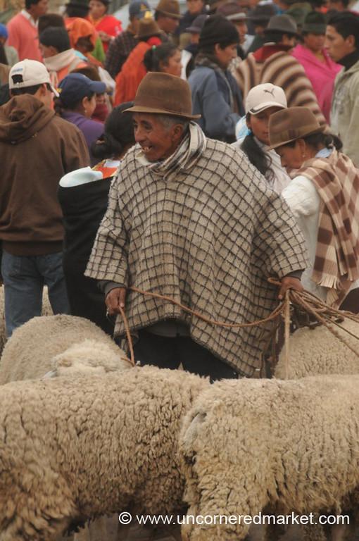 Holding On Tight to His Sheep - Saquisili, Ecuador