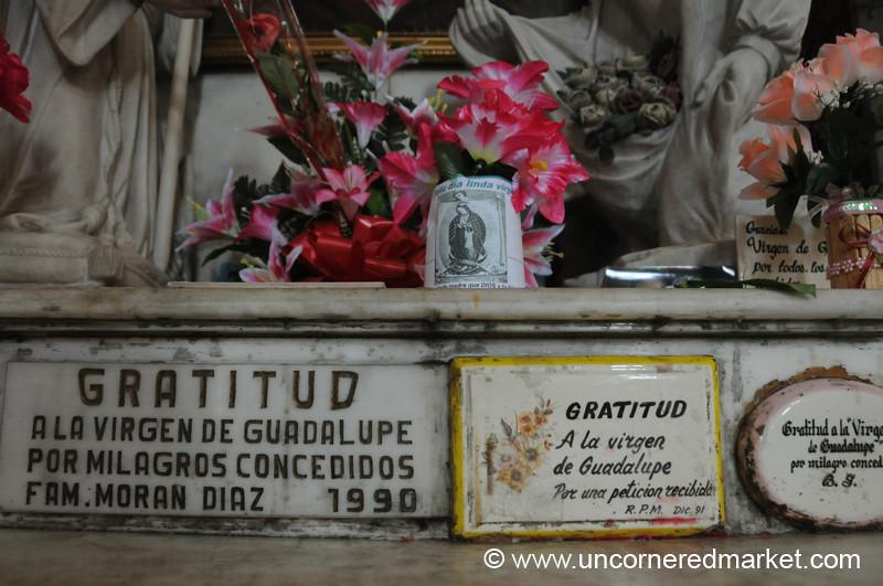 Flowers, Plaques and Offerings - Santa Ana, El Salvador