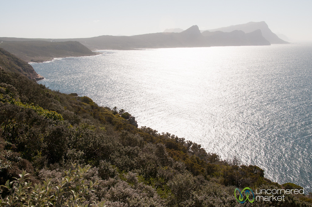 Late Afternoon, Cape Point - Cape Town, South Africa