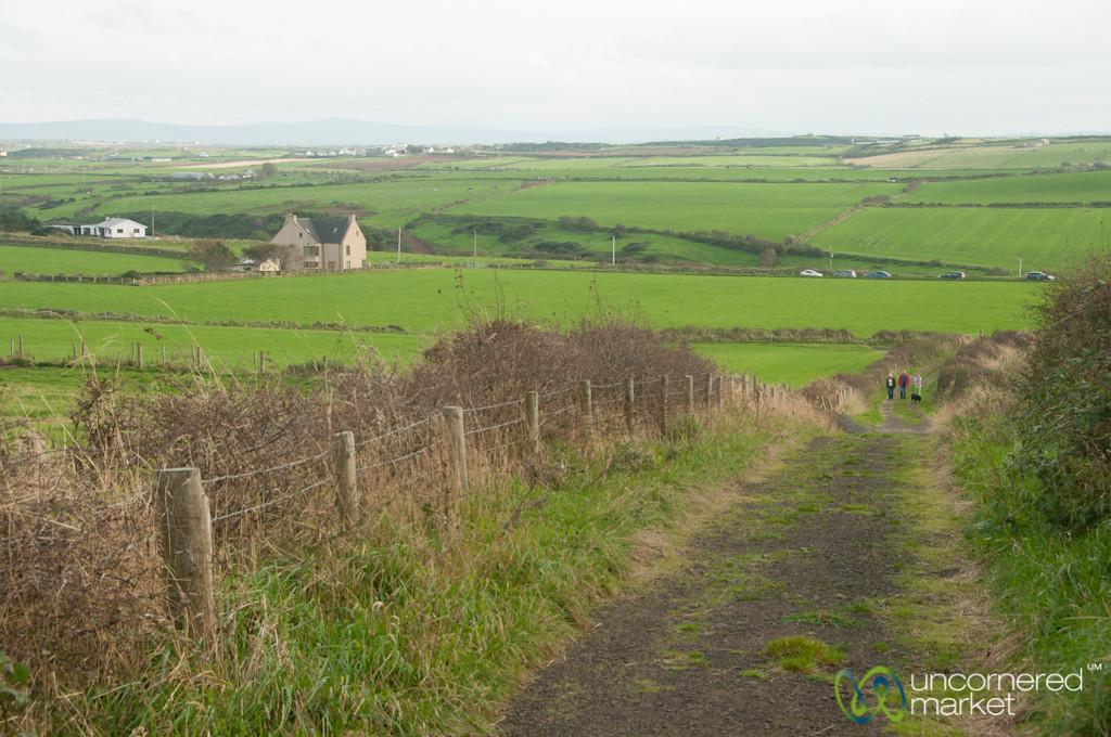 Northern Ireland Farm Fields - Giant's Causeway